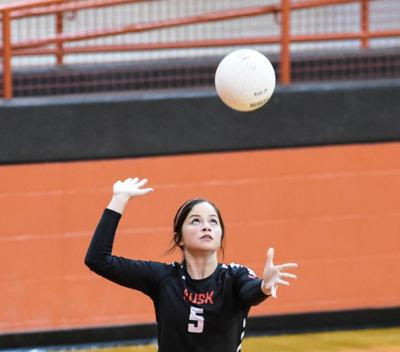 Area volleyball roundup