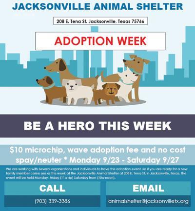 Shelter adoption week