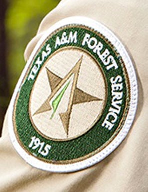 A&M Forest Service says early season drying could result in forest fires
