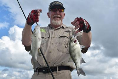 White bass — the peoples fish