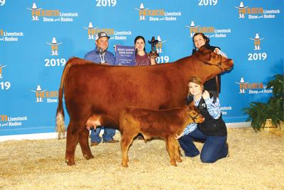 Jacksonville heifer named Reserve Champ at Houston Stockshow