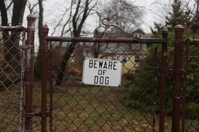 Beware of Dog.jpg