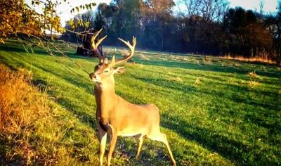 How to shoot a big buck