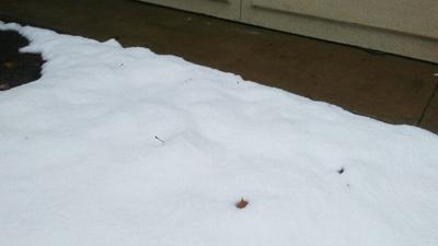 National Weather Service figures indicate Jacksonville received 7.5 inches of snow
