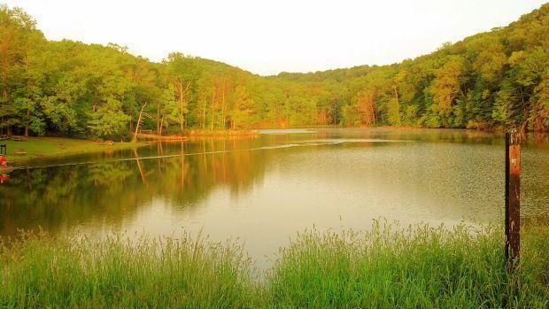 Brown County State Park vista