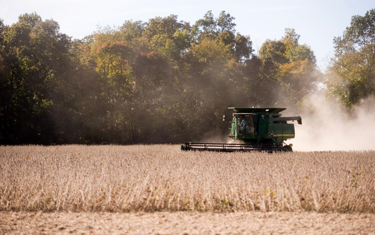 Farm Focus - Harvest 10/13/16