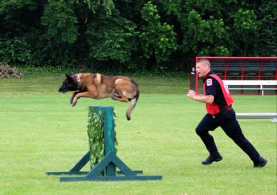 CPD seeks help funding K9 dog in wake of loss | News | jg ...