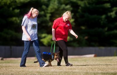 Service Dog Training 07/19/18