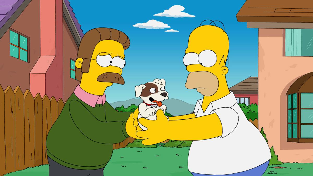 TV-Simpsons-Shearer