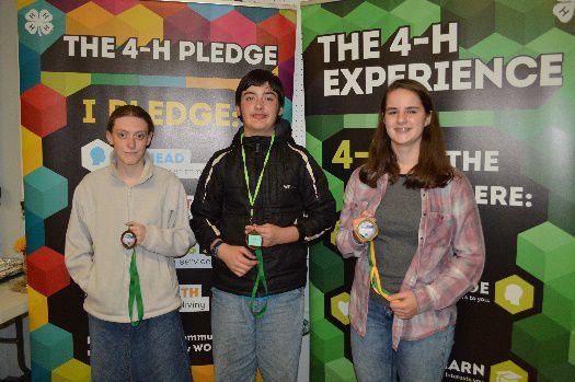4-h blue ribbon