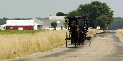 Amish meta