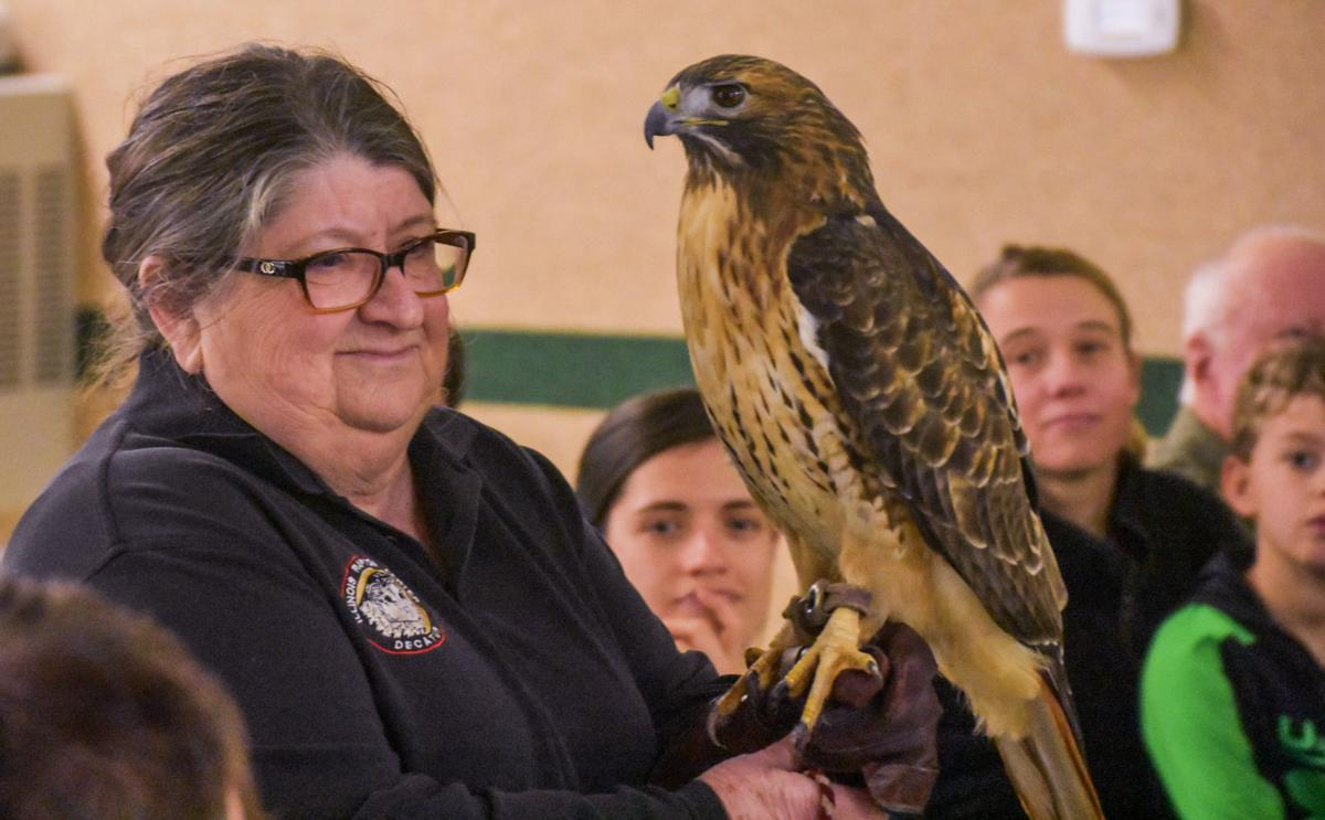 Getting To Know Our Local Raptors Mattoon S Douglas Hart Offers Close Up Look At Birds Of Prey Education Jg Tc Com