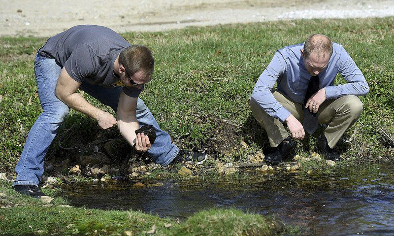 MSSU student studying snails for impact of mining cleanup efforts