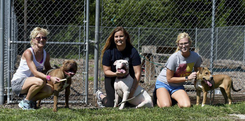 Group wants to end breed-specific dog bans in area communities
