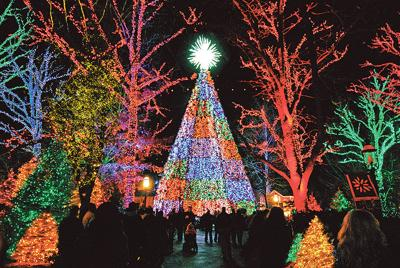 Christmas trees, light shows drawing record crowds to Branson ...