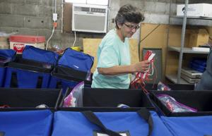 Preparing the polls: Election officials say extensive precautions ready for voters, judges