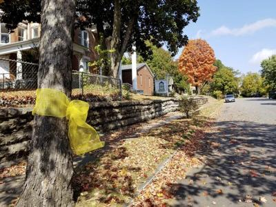 Neighbors display yellow ribbons in empathy for family of missing girl
