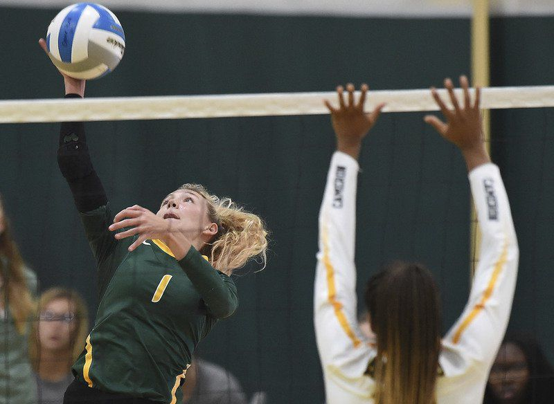 Lions split two volleyball matches