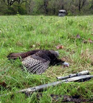 Keith Costley: Turkey hunting may be challenging this spring — but storytelling remains great