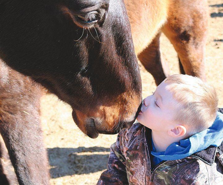 Neosho ranch using horses to heal human hearts