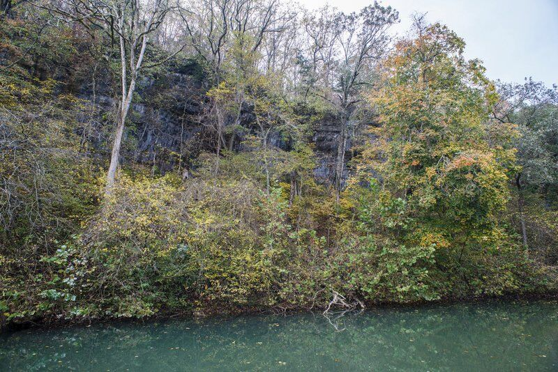 Andy Ostmeyer: A wild year for Missouri state parks