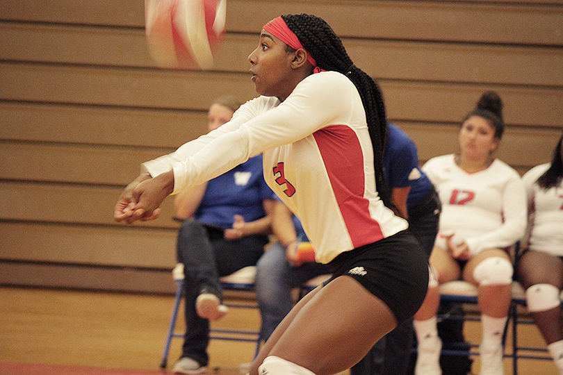 VOLLEYBALL: WHS hosts Lamar in home opener