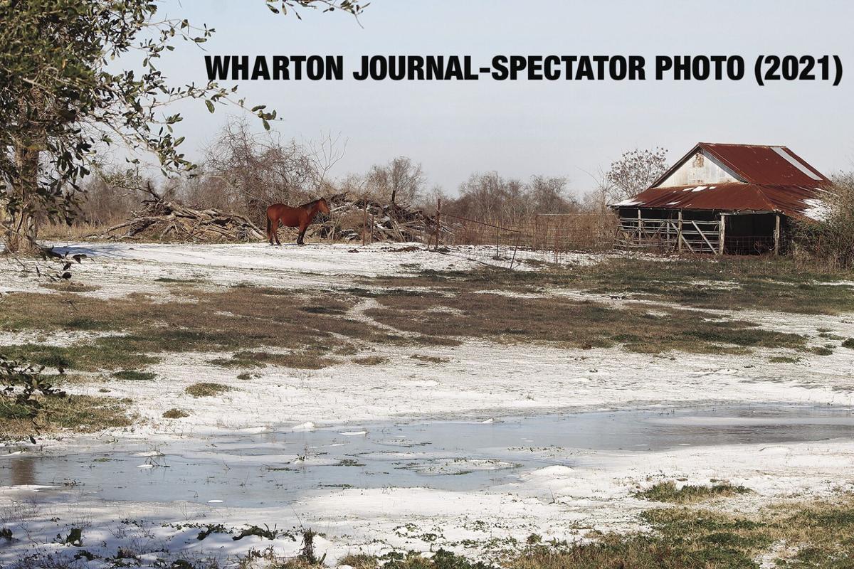 WHARTON SNOW