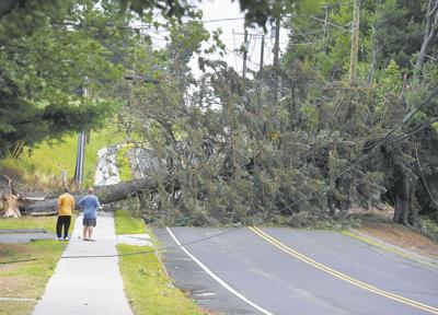 Tree downs power lines in Manchester