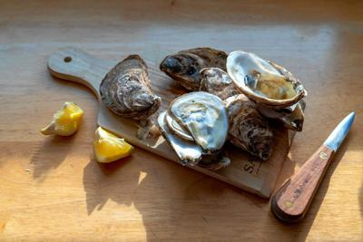 FOOD-OYSTERS-LESSON