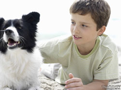 A five-step plan for keeping your pet safe from fleas and ticks