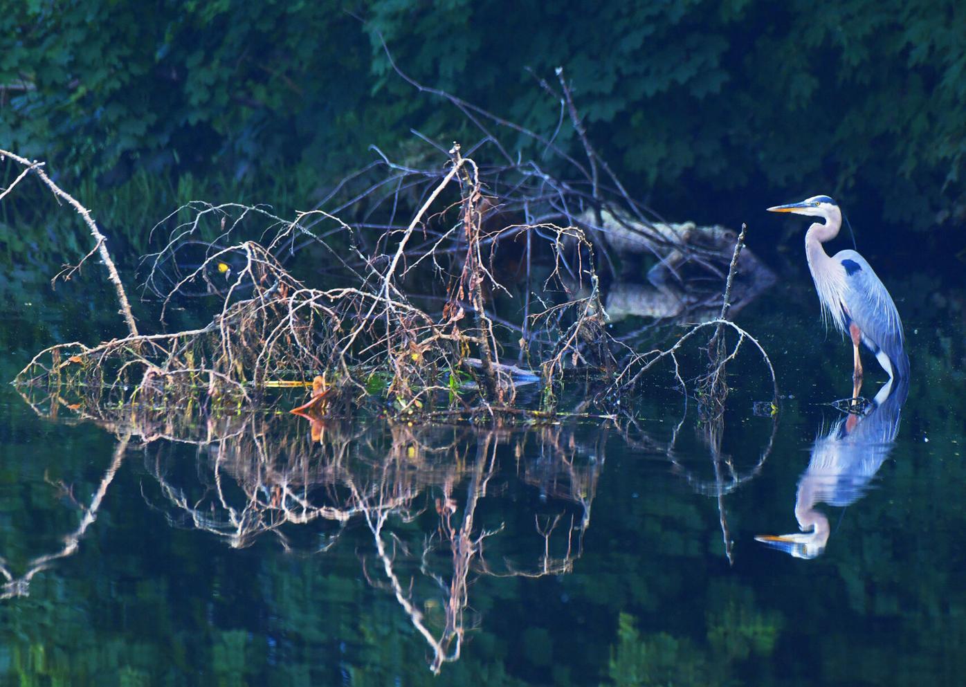 072021 The Blue Lagoon 01.jpg