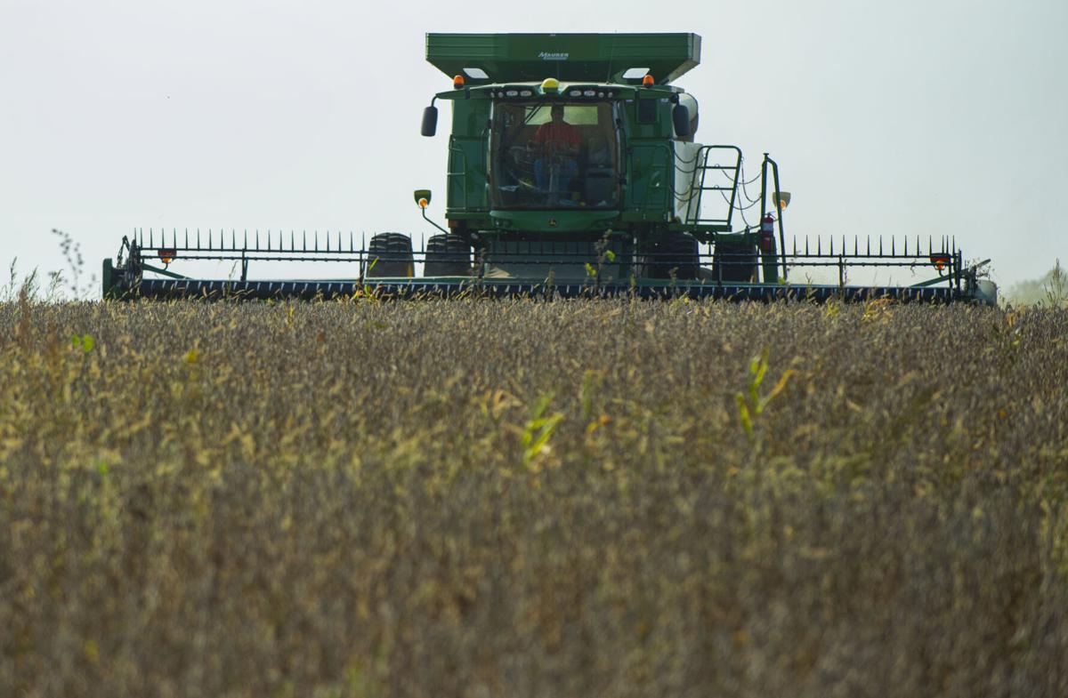 Harvest Season 9.21