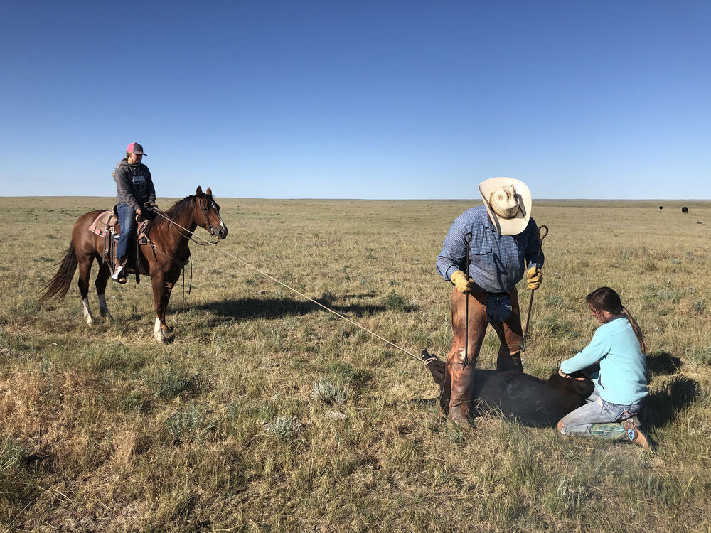 Raising a ranch family with values on Broken Arrow Angus Ranch
