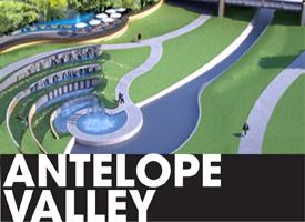 Antelope Valley logo