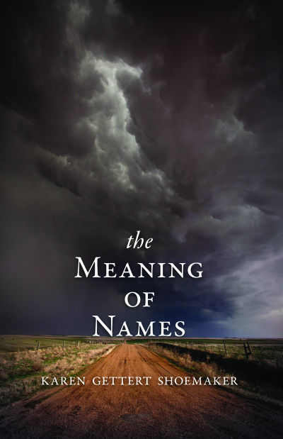 'The Meaning of Names' book cover