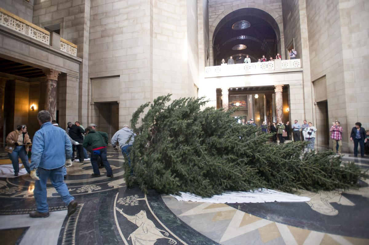 State Christmas tree makes its journey from farm to Capitol ...