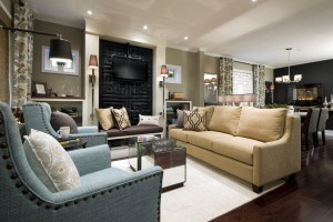 Candice Olson: Focus is the jewelry of design : The ( - Candice Olson Living Room Designs