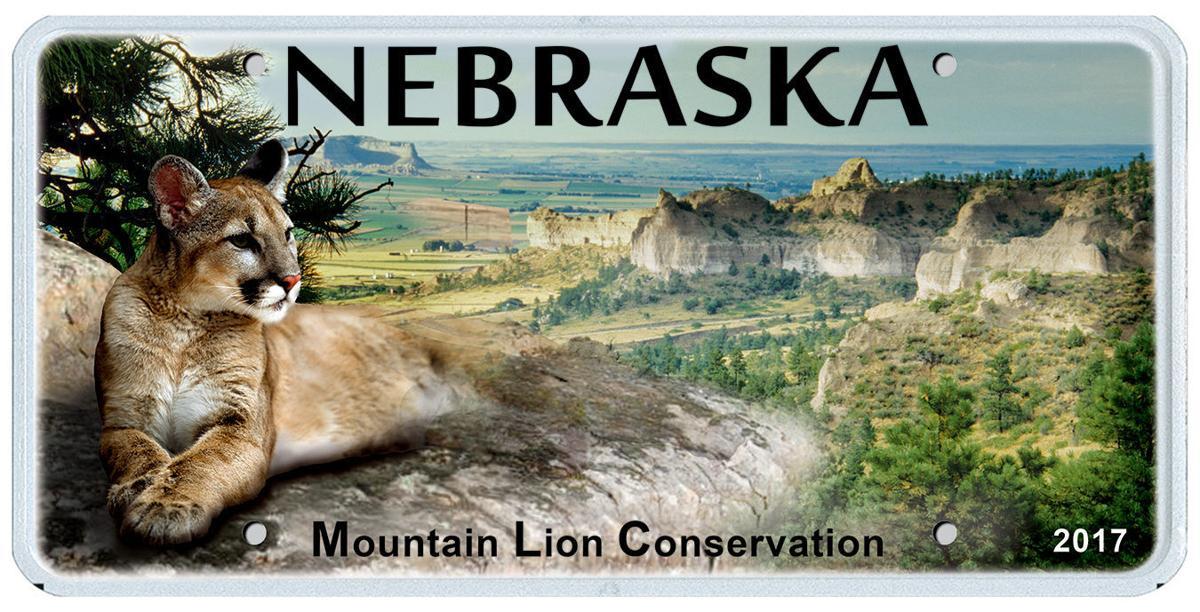 Nebraska mountain lion plates