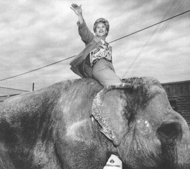 Orr Takes an Elephant Ride