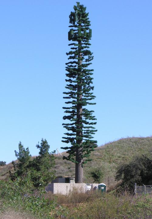 Residents oppose plan for cell tower disguised as pine tree | Nebraska News  | journalstar.com