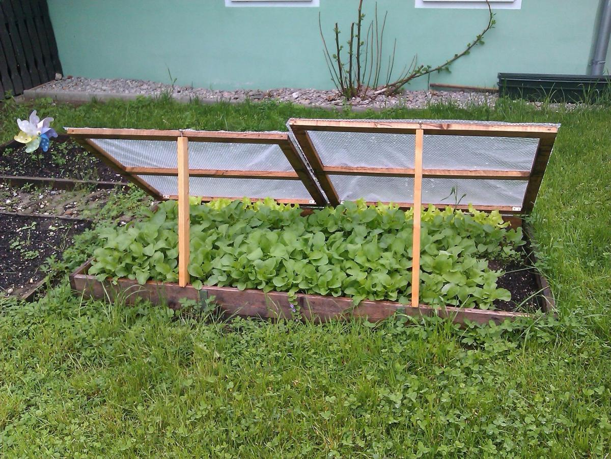 Sarah Browning: Extend growing season with cold frames, hotbeds ...