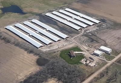 Butler County chicken farm