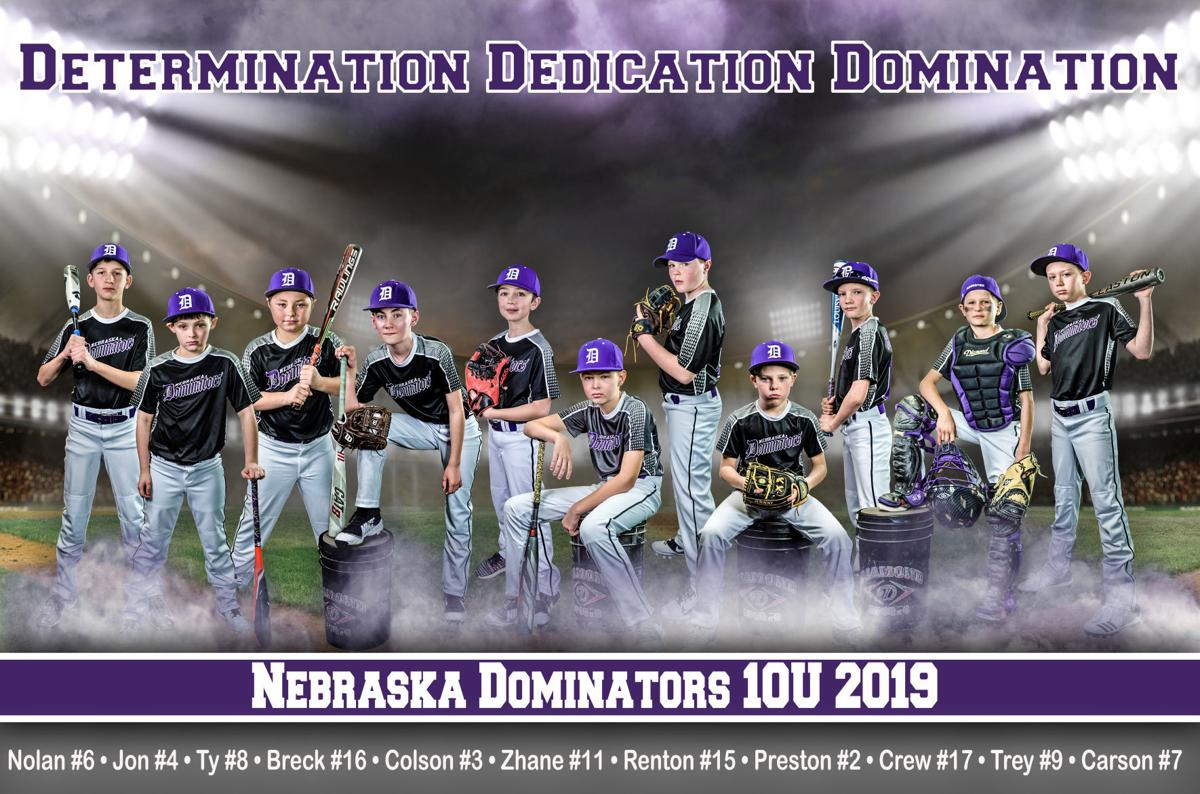 Dominators baseball art