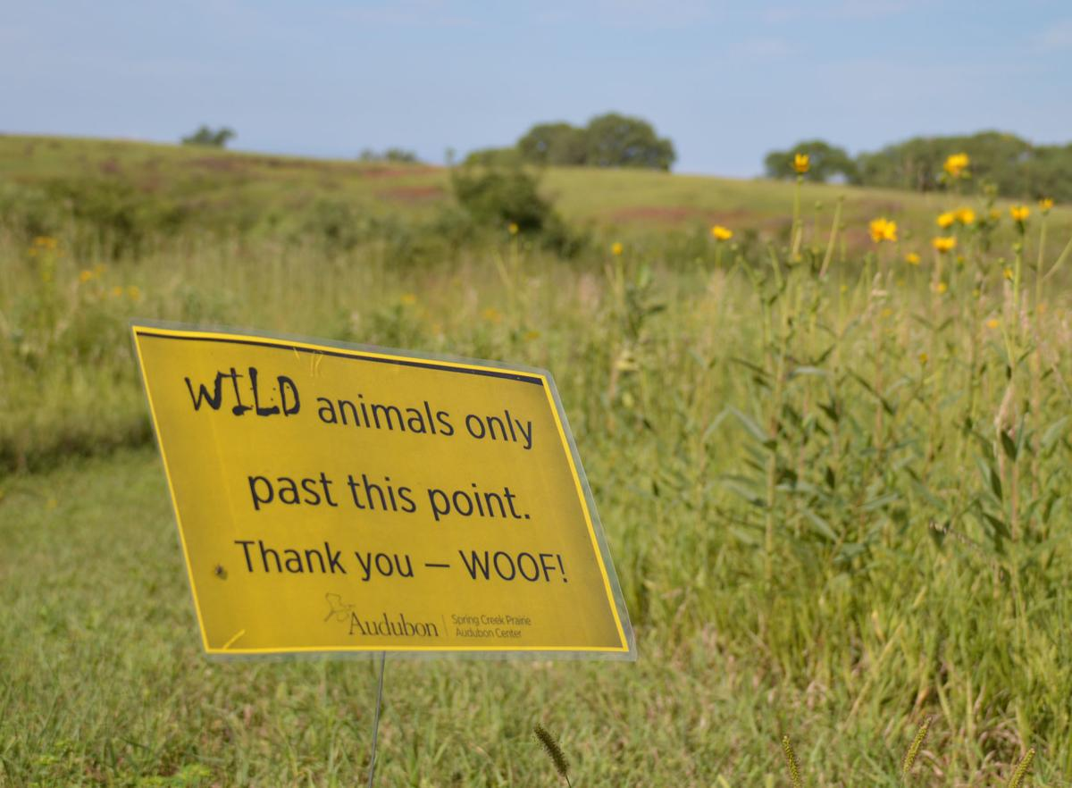 Sign marks hiking boundary for pets