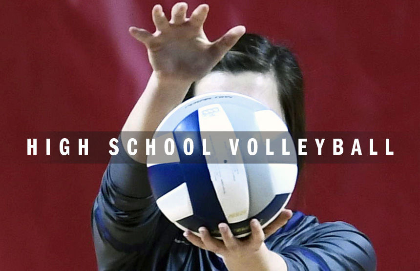 High school volleyball logo 2014