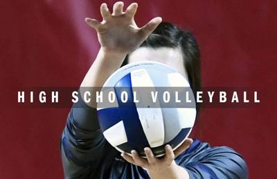 High school volleyball logo 2014