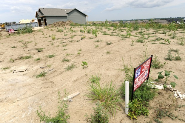 Undeveloped lots