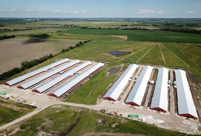 Butler County chicken barns