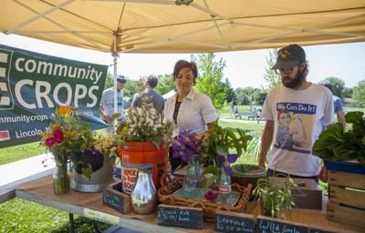 New local food group seeks to combat ignorance | Local Government