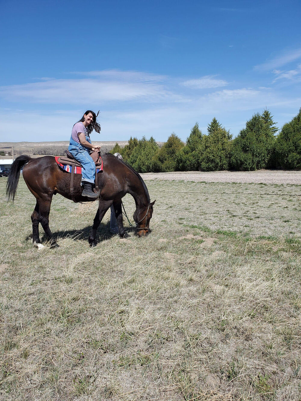 After 10 years, a Panhandle horse will return to his childhood home